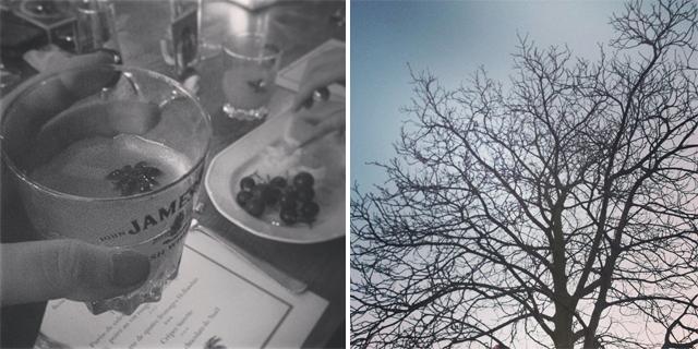 New Year, New Habits: 一期一会