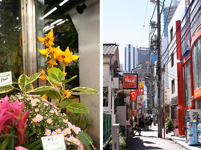 tokyo last venture