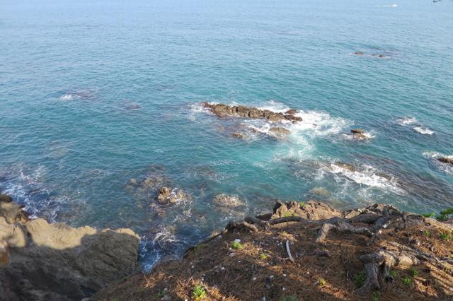 kochi - sea