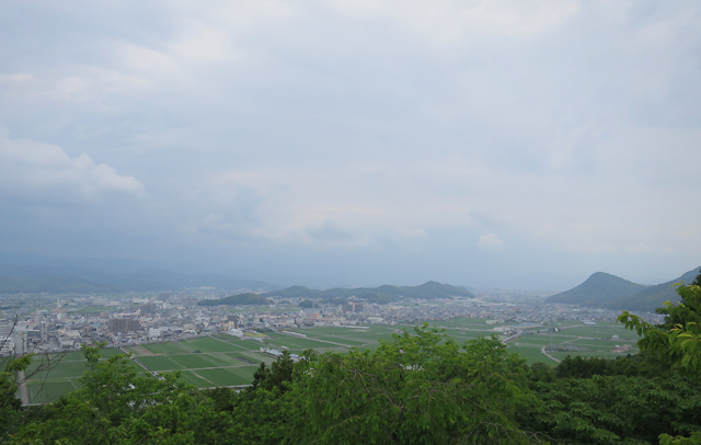 kochi - view