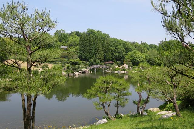 2605-garden